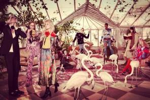 Gucci im Wunderland